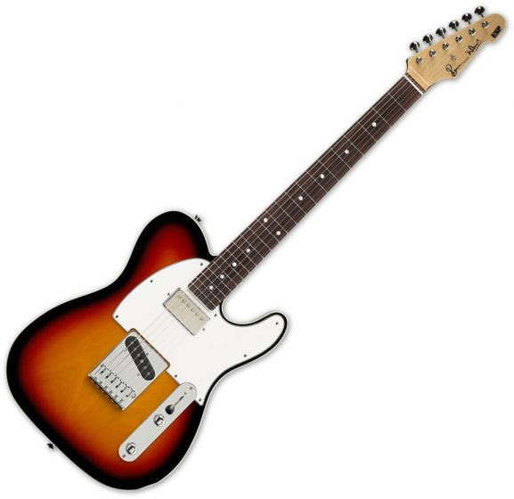 ESP Ron Wood 3TB Guitar with Case, ESP RON WOOD 3TSB