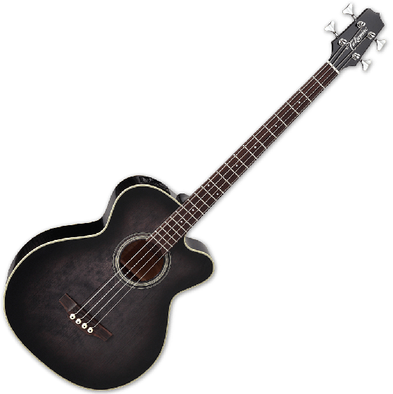 Takamine PB5 SBL Pro Series Acoustic Guitar in See Thru Black[, TAKPB5SBL]